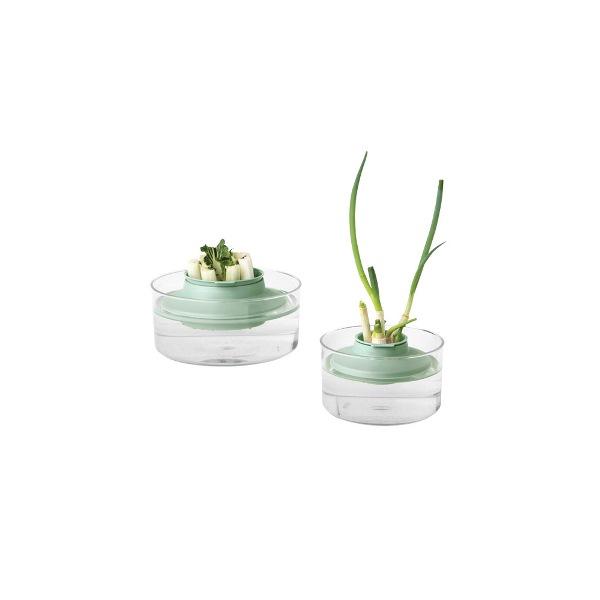 Комплект за съхранение на свежи билки Brabantia Tasty+ Jade Green(2)
